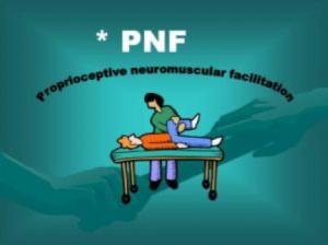 μέθοδος pnf